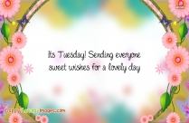 Its Tuesday Images